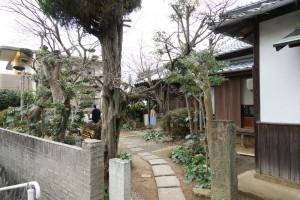 06冬の庭_mini
